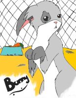 Anime Bunny by Chiharu02
