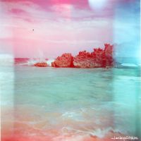 untitled bermuda 008 by lesleysilvia