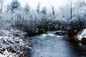 Pre-Winter by HrWPhotography