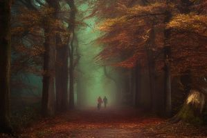 Autumn's leading the Way by Oer-Wout