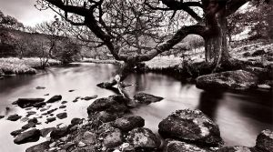 IRELAND vol.13 by Ssquared-Photography