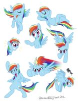 Rainbow Dash doodles by BrendaHickey