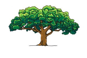 Tree for Animation by SqueezeBoxx