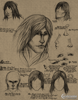 Gabriel Belmont (face/hair study) by Orionali