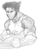Cancelled Wolverine Commission by anthonyharrisart