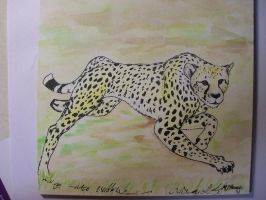 Cheetah quickie: Relay for Life Fundraiser by whitekratoswolf