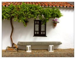 This Is Life In Alentejo by nunovix