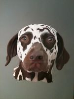 My Dalmatian by Suspirias