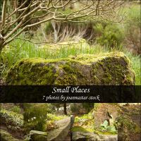 Small Places by joannastar-stock