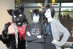 SVS-Con 2014: What Is Homestuck?! by FallenAngel842