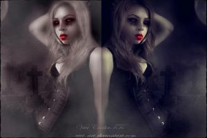 two versions by vivi-art