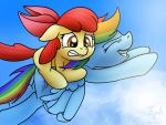 Apple Blooming in the Air by Conicer