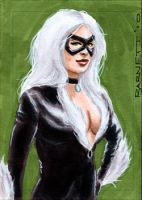 Black Cat again by artguyNJ