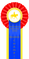 High Noon Western Show - Reserve Champion by Zephyrra