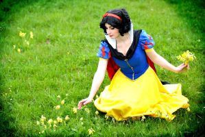 Snow white - Flowers by Sakura-Kagamine