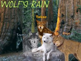 Wolf's Rain wolves by Str0ngwolf