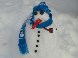 Funny snowman by ajackson310