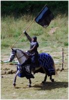 Knight of Camargue III by Eirian-stock