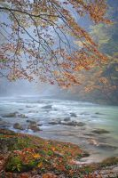 Vintgar Gorge in the Rain by AndreasResch