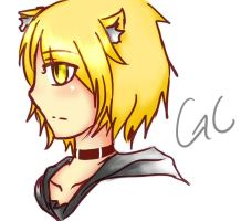 GC:A cat comes from nowwheres by AhasakiYuuki