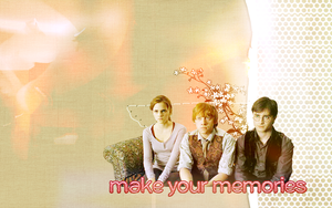 HP Trio Wallpaper by peppermintfrogs