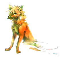 Bright by Kipine