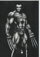 Bone claw Wolvie by -vassago-