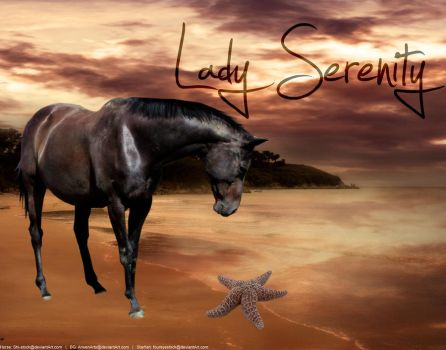 Lady Serenity by Horses-Make-My-Heart