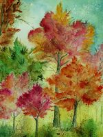 Autumn Woods by aragonia