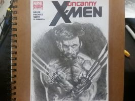 Wolverine by Lenzations