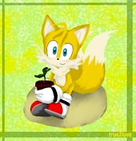 Tails and Cosmo - Yearly Picture by true2love