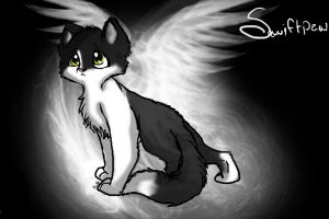 Swiftpaw by Spottedfire1212