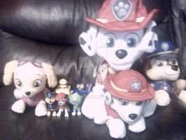 New Paw Patrol Collection from the Family today! by Goku022