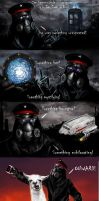 Zee Captain Rides in Style by Stargate4ever23 by alexiuss