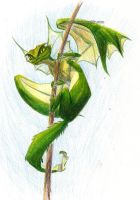 flying lizard by captainhawkeh