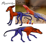 Mwanza Flat Headed Agama by TripleThreatKennels
