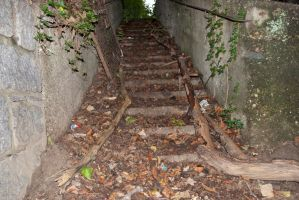 Stairs with green by Alynaris-Stocks