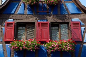 Red on Blue Half-timbered by DeviantTeddine
