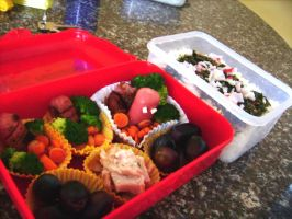 My first Bento by icrest