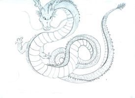 Shenron rough by fugi555