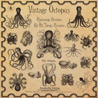 Vintage Octopus Brushes by AllThingsPrecious