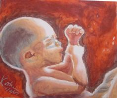 Before Birth by pro-life