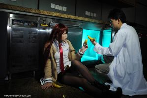 Steins Gate - It is Possible by vaxzone