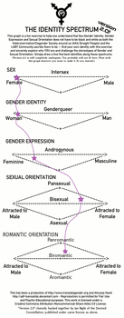 Gender + Sexuality Spectrum by Teaislove