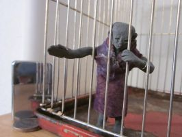 Clay Woman in a Cage by Spinian