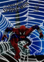 THE AMAZING SPIDERMAN by MUTANERDA