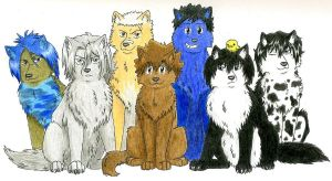 Vongola Family - wolves by Wilczusiek