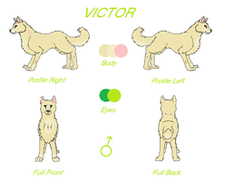 Victor Reference Sheet -OLD- by TheDragonInTheCenter
