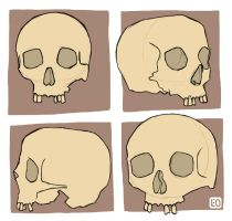 No Jaw Skulls by EO88