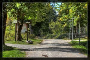 The way to the park by deaconfrost78